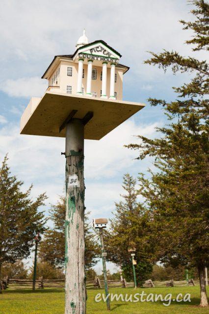 image of birdhouse from birdhouse city