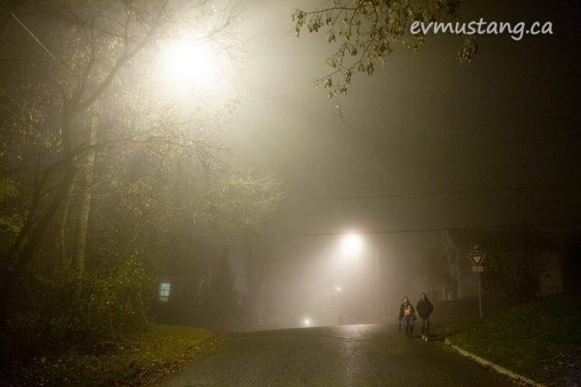 fog_walk2015