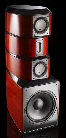 Evolution Acoustics MMTwo