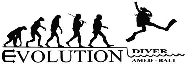 """Résultat de recherche d'images pour """"evolution diver"""""""