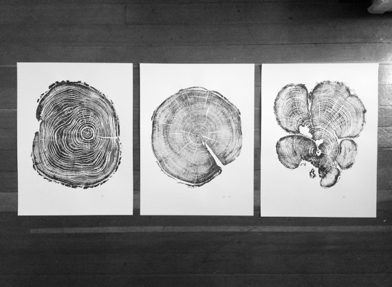 Tree ring art