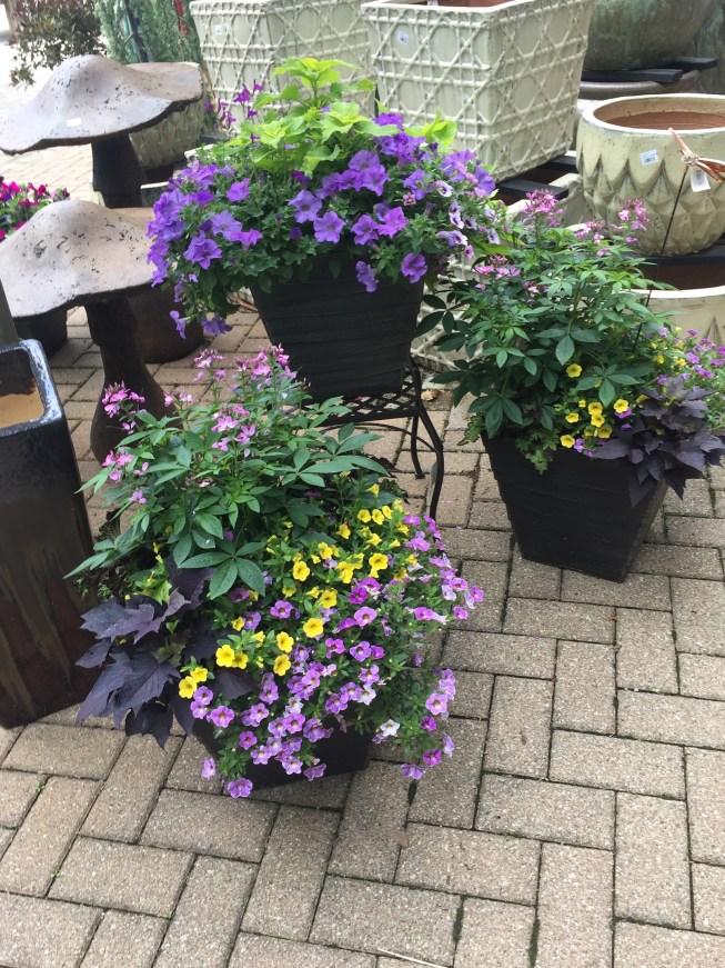 Outdoor Patio Pots