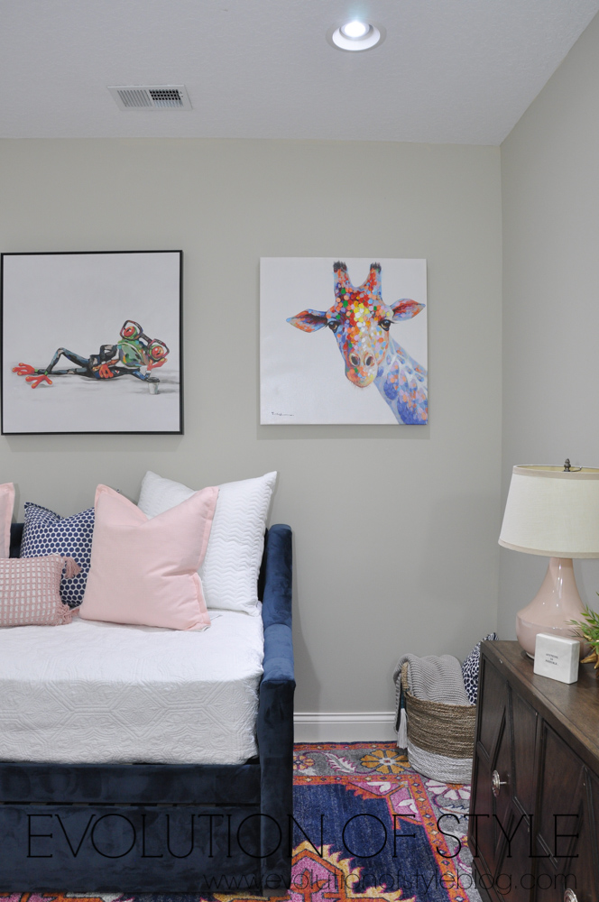 Multi-functional navy and pink room