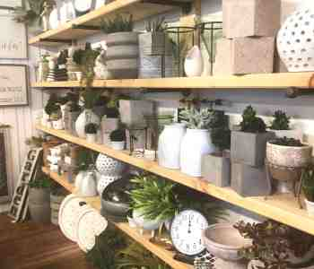 Burlap and Birch Store