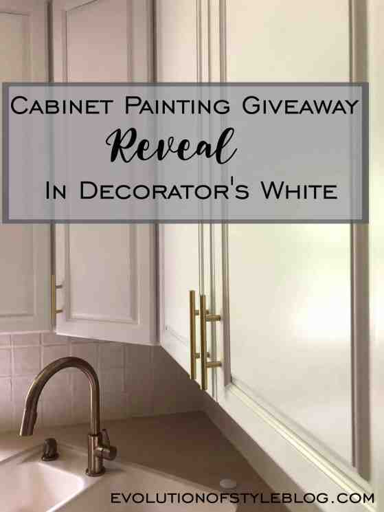 Cabinet Giveaway Reveal