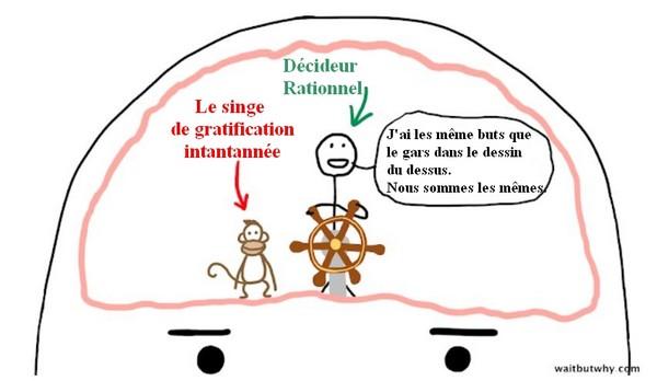 cerveau de procrastinateur