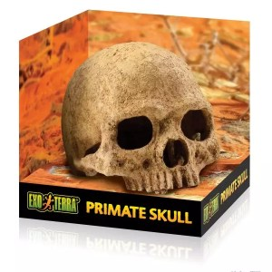 Exo Terra ProRepimate Skull, PT2855