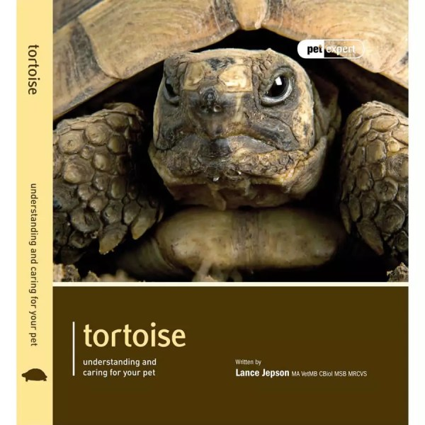 Pet Expert - Tortoise