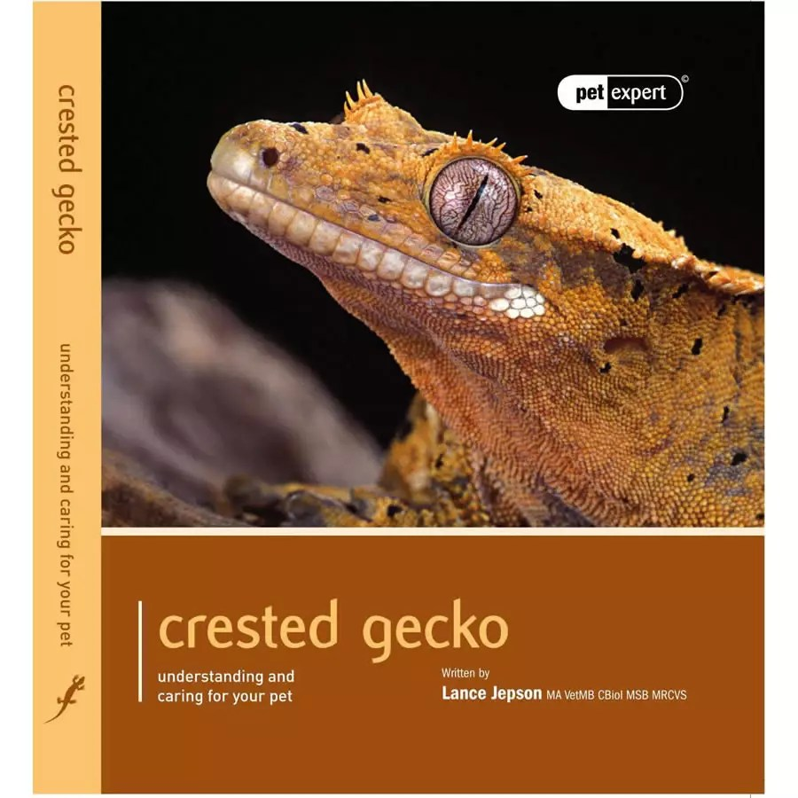 Pet Expert - Crested Gecko