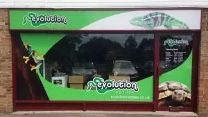 Reptile shop oxfordshire