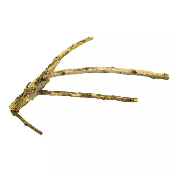 ProRep WHITE Acacia Branch SMALL
