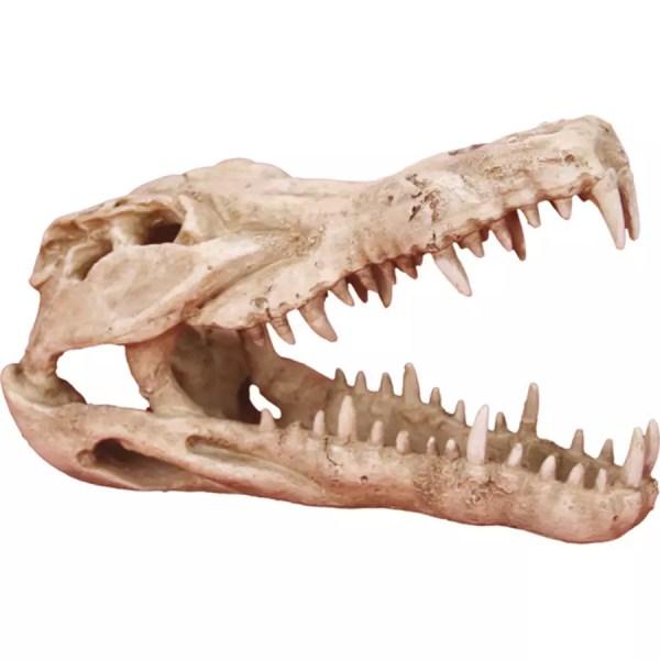 LR Deco Skull Crocodile DS-C