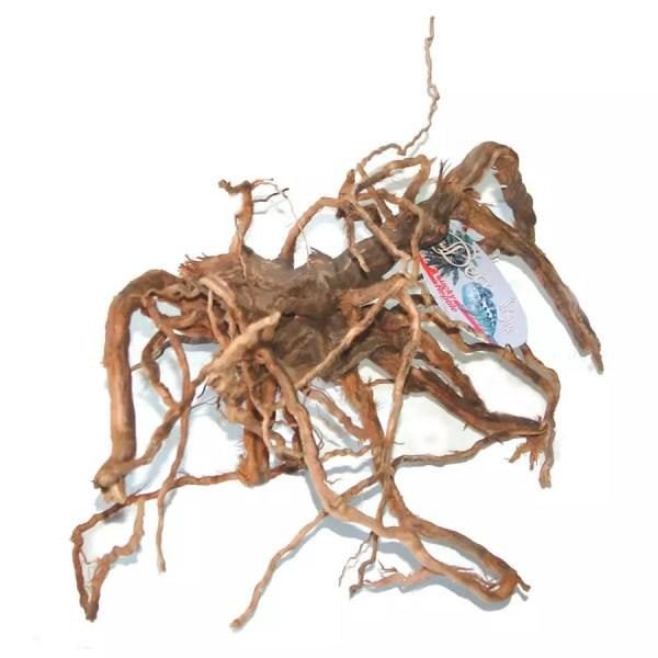 Lucky Reptile sand-blasted Vine Root Medium