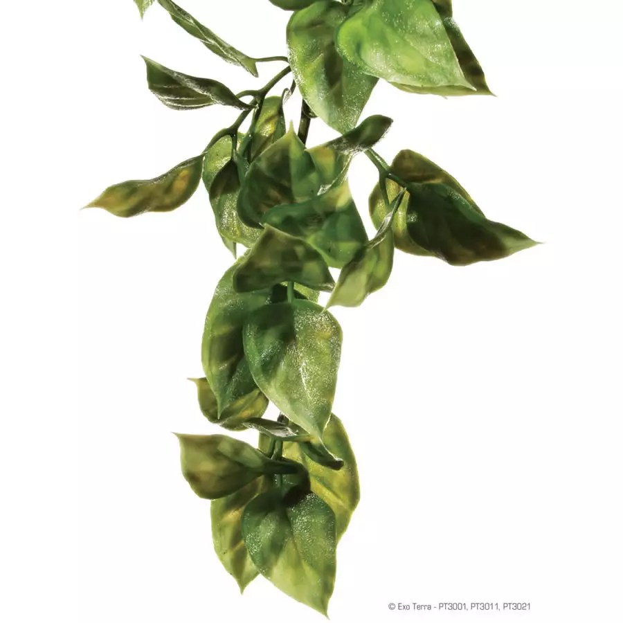 Exo Terra Plastic Plant Amapallo Small