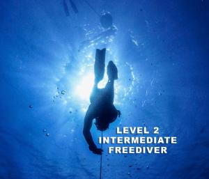 freediver swims down line silhouette