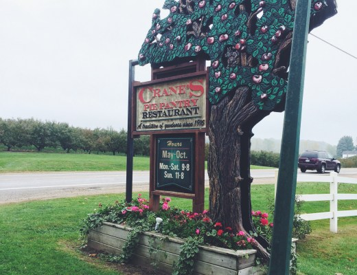 Visit Crane Orchards for the most AMAZING apple pie!