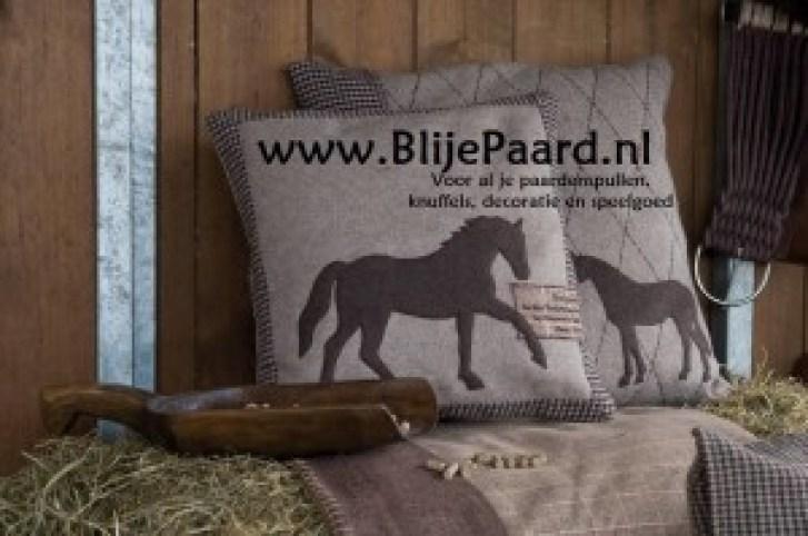 blije-paard