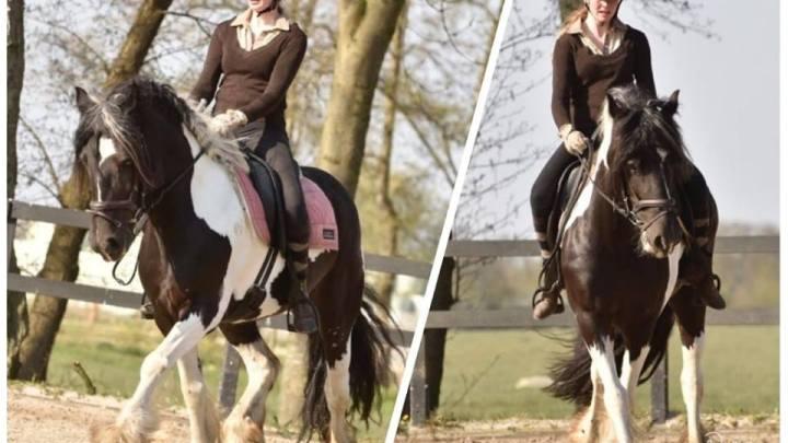 Trainingsfoto's van Maddy