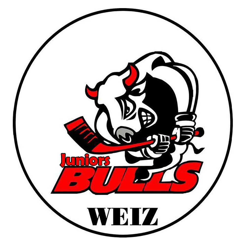 Bulls Weiz Juniors