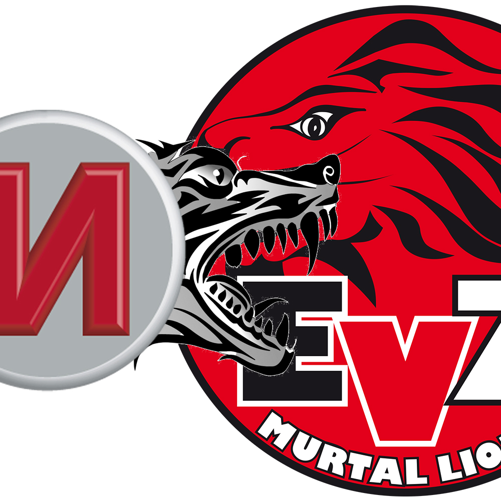M-Rast Wölfe vs Murtal Lions II