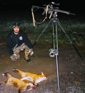 Some hard charging fox from beginning of season and this 43# coyote from end of September circled the call and would not stop ... Shot him on a steady trot at 175 yards as he worked down wind