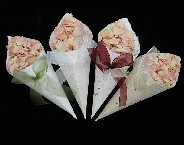 petal cones