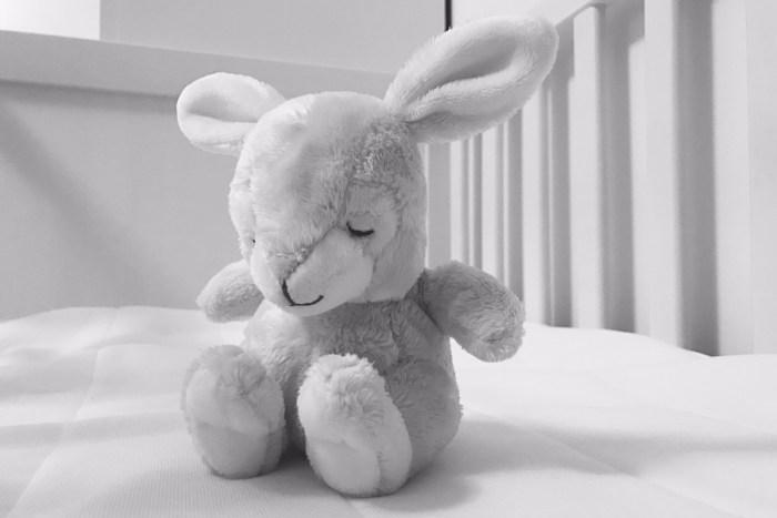Kaninen Ninen