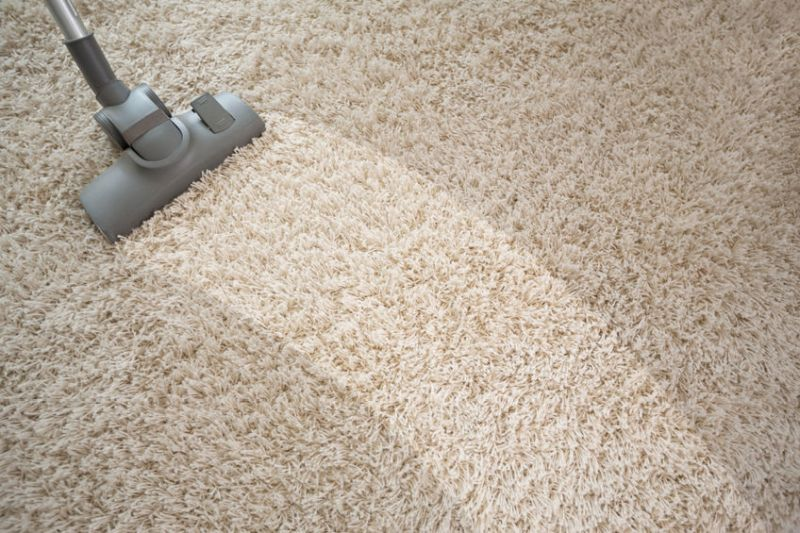 54014543 – vacuuming rough carpet in living room with vacuum cleaner