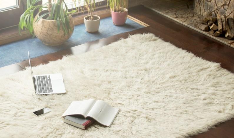 Připravte se na zimu s novým kobercem na podlaze