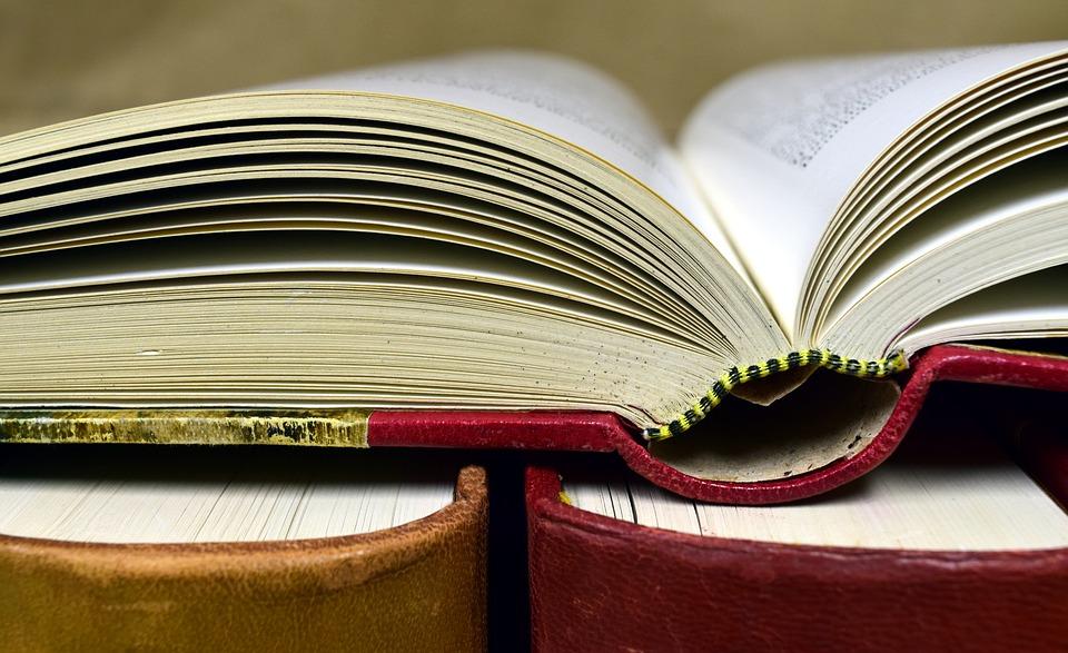 book-2909346_960_720