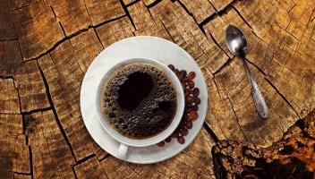 Skvělá chuť kávy pod stromeček? Proč ne!