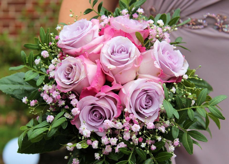 roses-712376_960_720