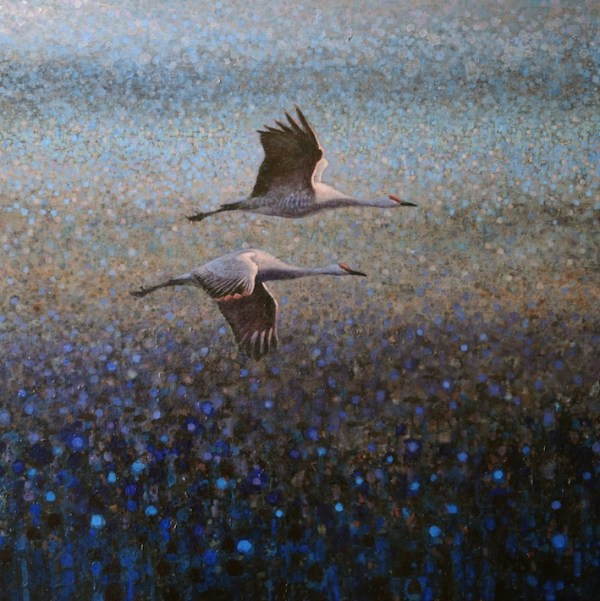 ewoud-de-groot-wildlife-two-sandhills-2012