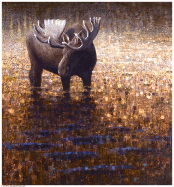 ewoud-de-groot-wildlife-wading-moose-03-2011