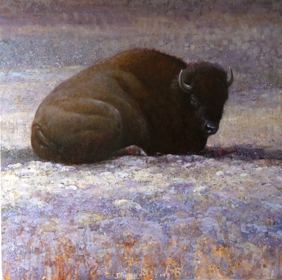 ewoud-de-groot-wildlife05