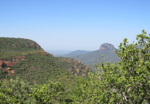 Soutpansberg Protected Area
