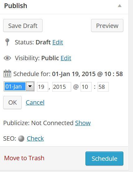 WordPress-Publisher-Area-Schedule-Publication-option