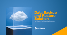 data backup and restore solution