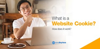 What is a Website Cookie and How does it work