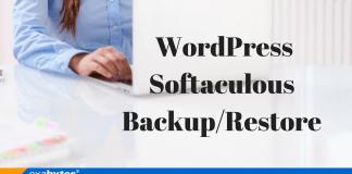 WordPress Softaculous Backup/Restore