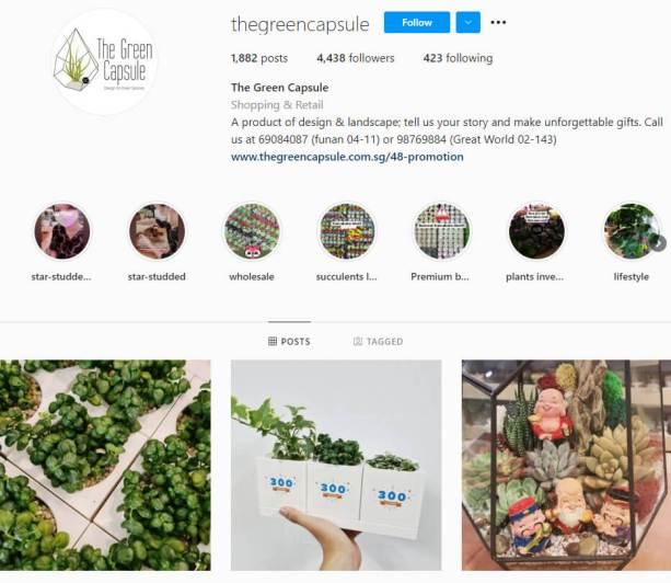 The Green Capsule Instagram