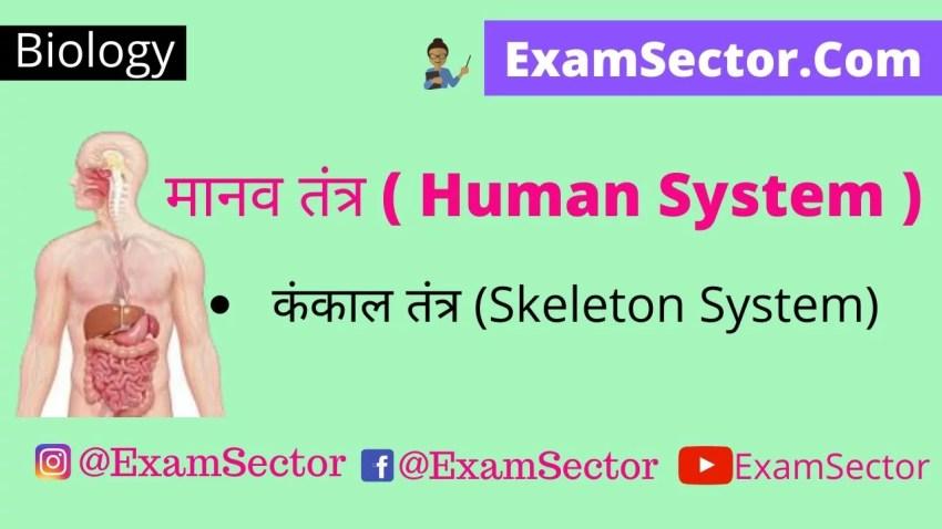 मानव तंत्र ( Human System ) | कंकाल तंत्र (Skeleton System) ,