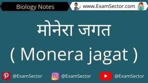 Monera jagat kya hai in hindi