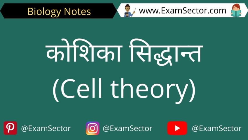 What is Cell theory in Hindi