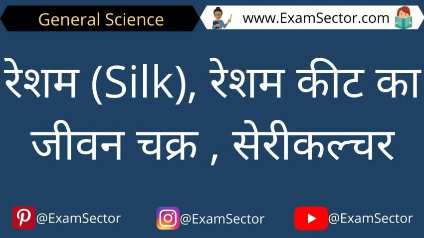 रेशम (Silk), रेशम कीट का जीवन चक्र