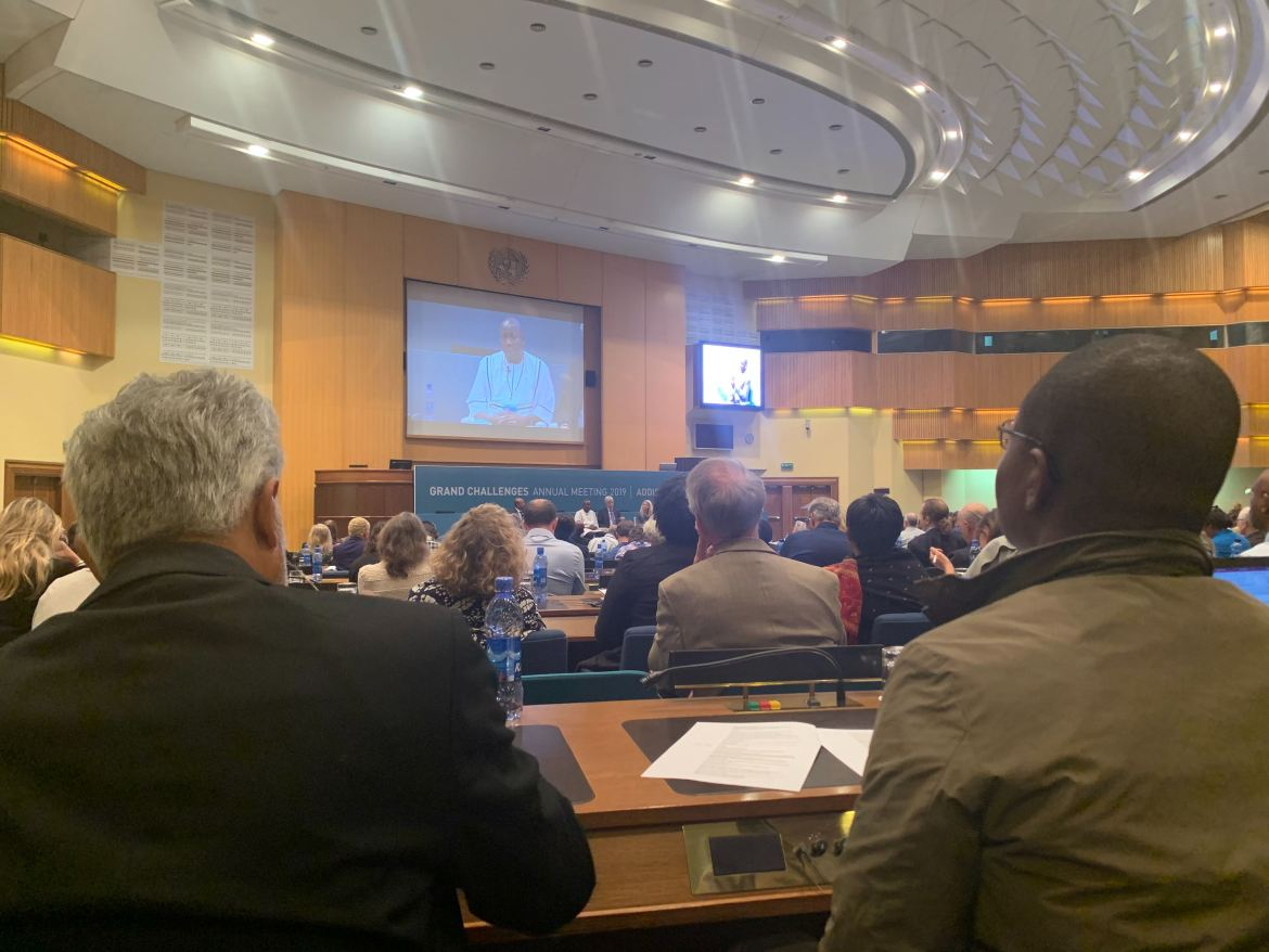 Grand Challenges summit at the United Nations in Ethiopia 2019