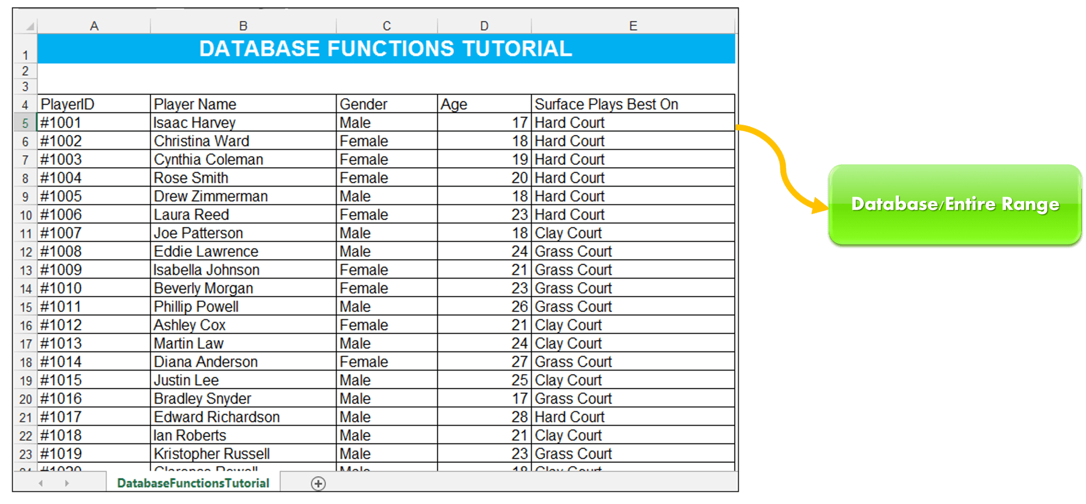 How To Use Excel Database Functions Dget Daverage Amp Dmax