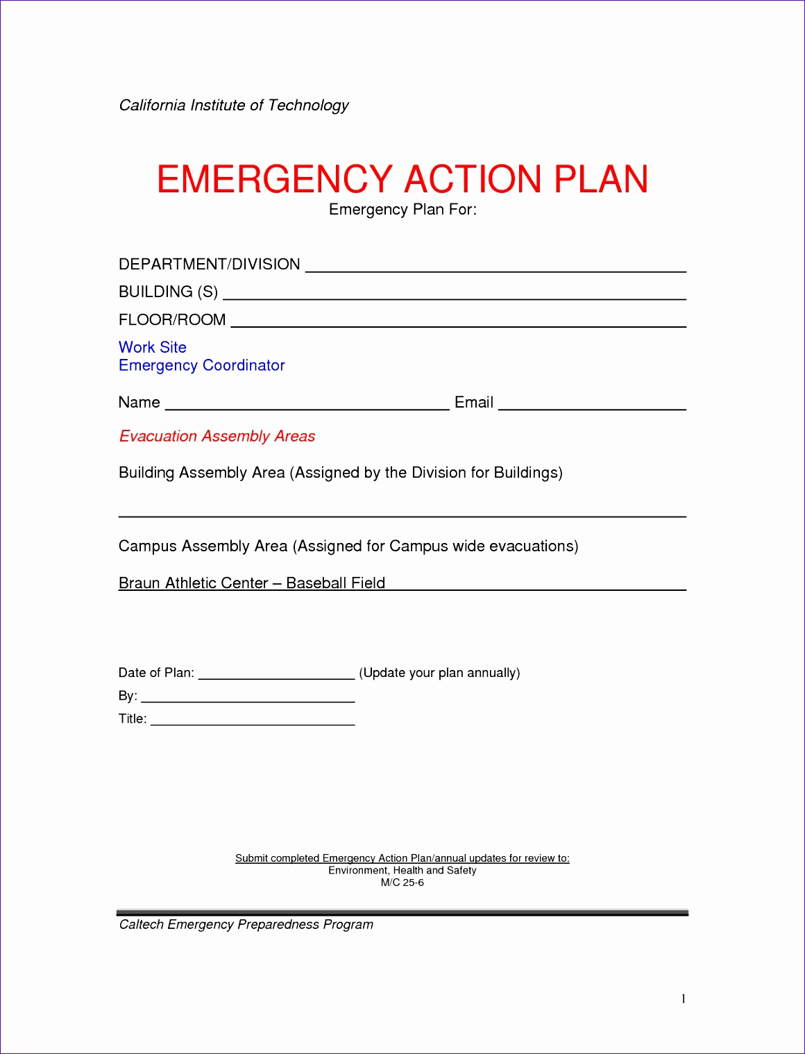 9 Action Plan Templates Excel