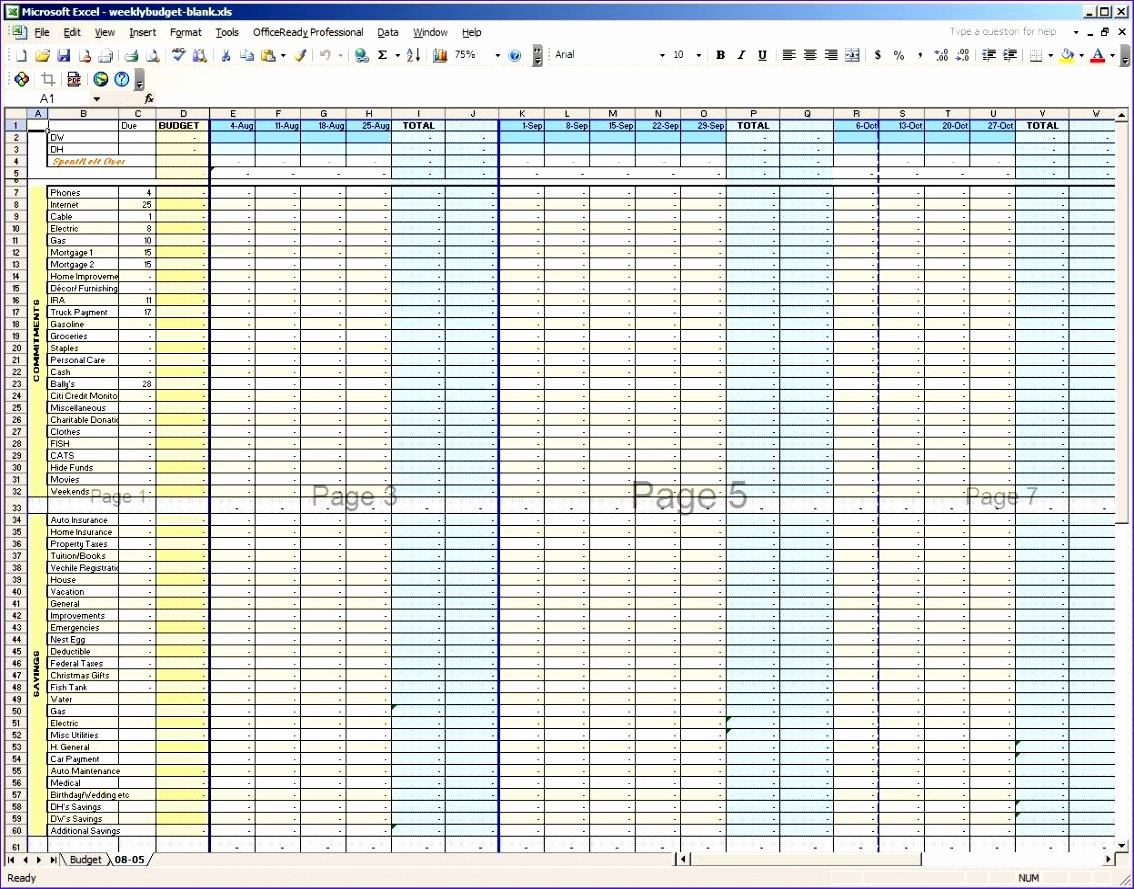 11 Excel Weekly Budget Template