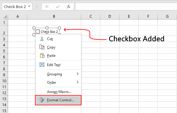 Format Control Option Checkbox